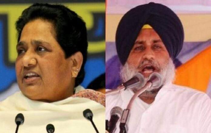 BSP chief Mayawati and SAD president Sukhbir Singh Badal (Image credit: ThePrint)